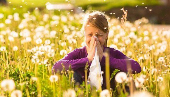 如何防范和缓解花粉过敏